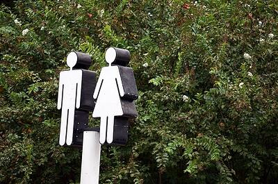 Hair testing vs. urine testing: A comparison