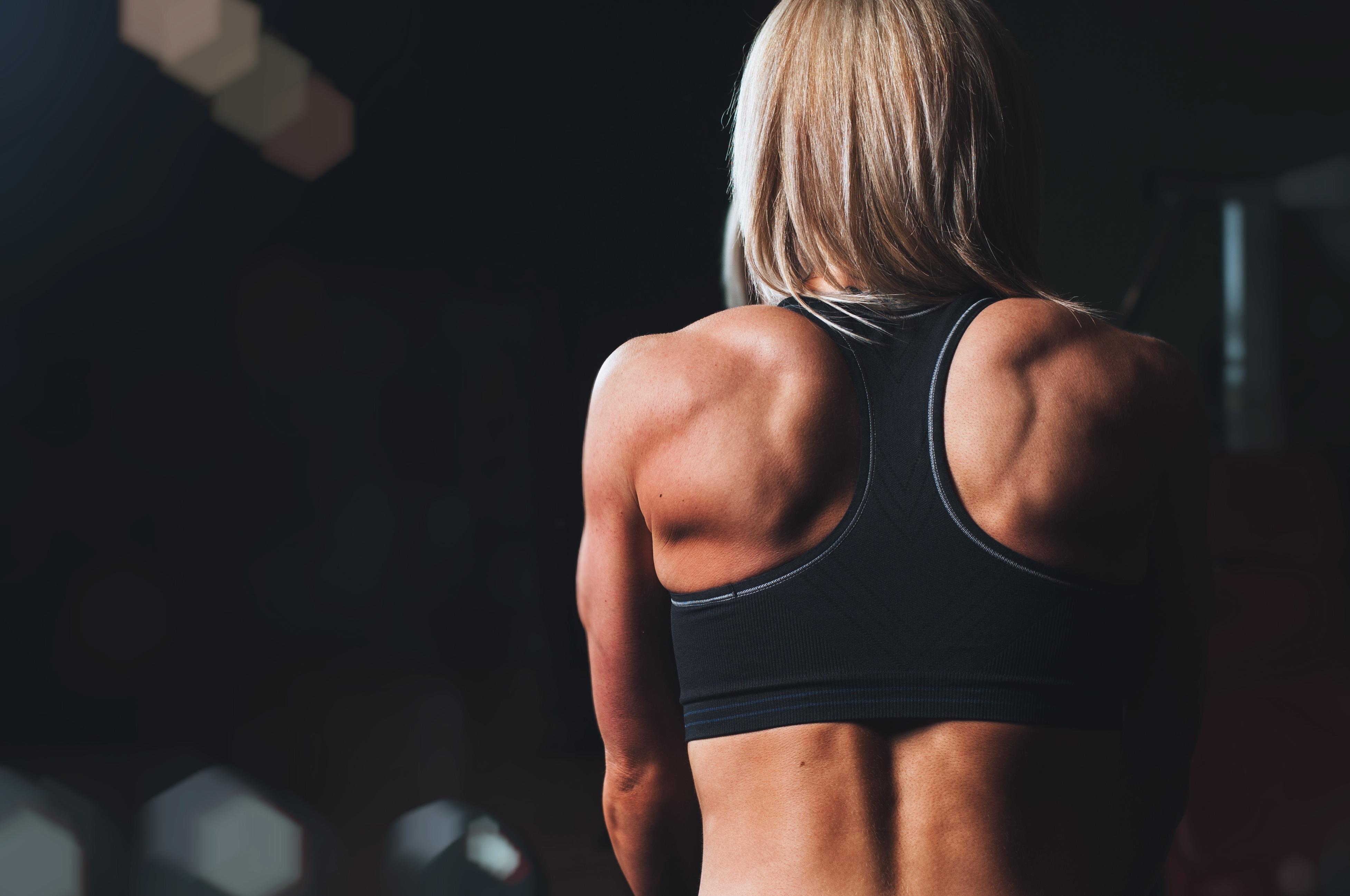 bodybuilding draw Cheet Sheet
